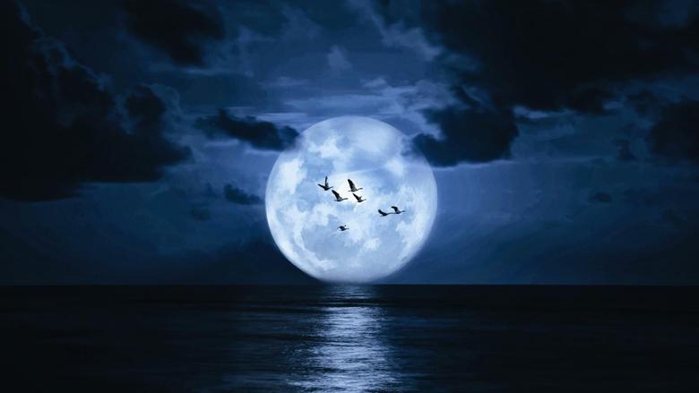 Supermoon On The Night Sky Above The Sea
