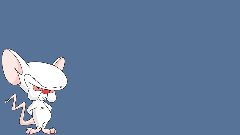 Pinky Wallpapers