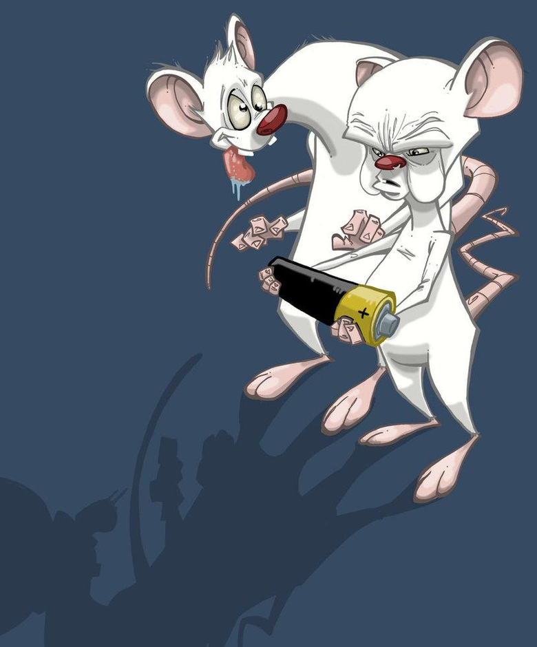 Pinky And The Brain Wallpapers 86607