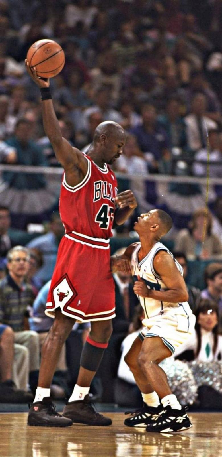 Michael Jordan wallpapers by Jared 64646 zedge