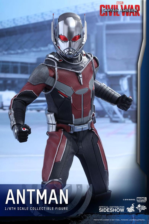 Marvel Ant
