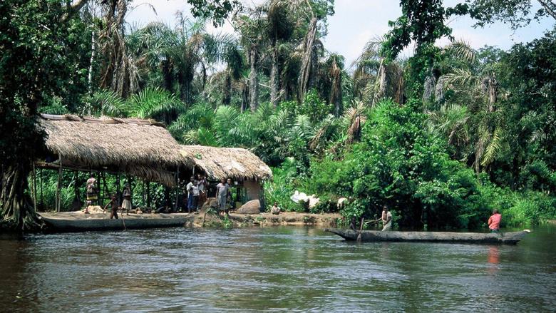 Wallpapers Congo