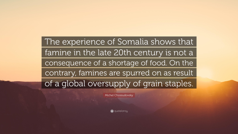 Michel Chossudovsky Quote The experience of Somalia shows that