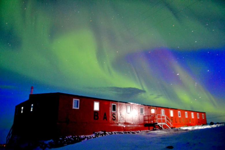 Tierra de Ping inos Base Antàrtica Belgrano II
