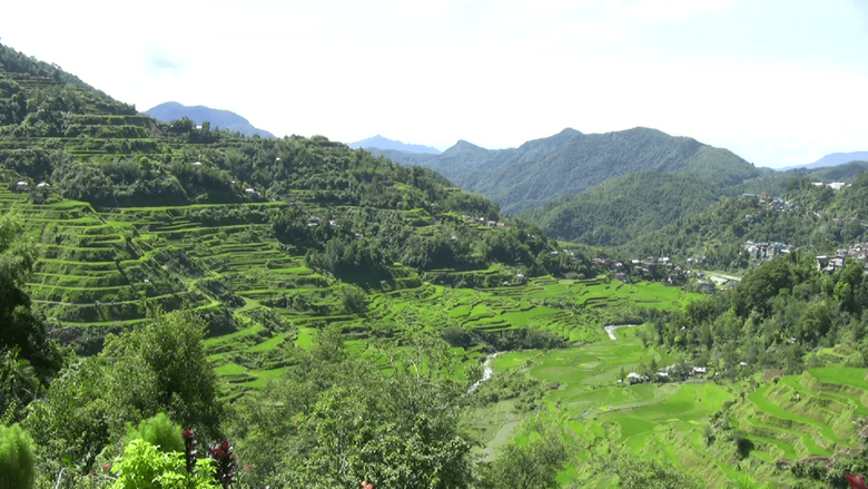 Banaue rice terraces Philippines Stock Video Footage