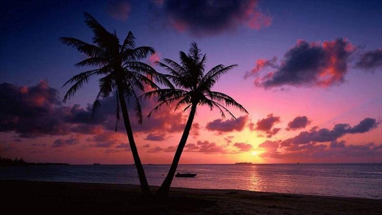 Beach Sunset Live Wallpapers Goa India