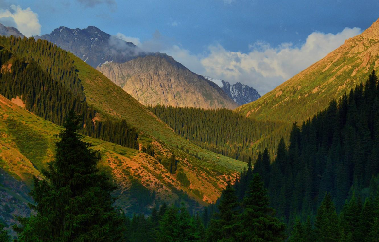 Wallpapers trees mountains gorge Kyrgyzstan Kyrgyzstan Jety