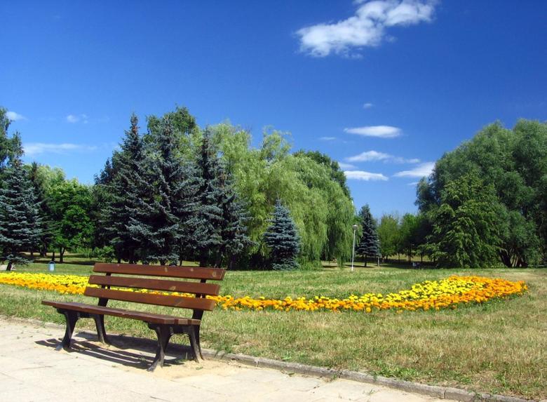 Misc Romania Bucharest Park Cloud Bank Blue Sky Summer Tree Flower
