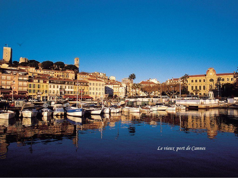 Cannes by Night 1024x768 Wallpapers Cannes 1024x768 Wallpapers
