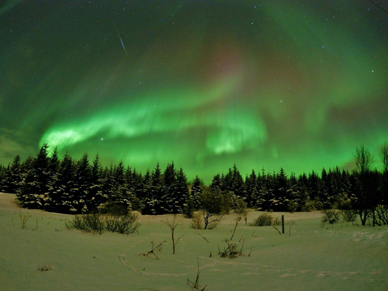 Our hunt for the Northern Lights was pretty damn successful