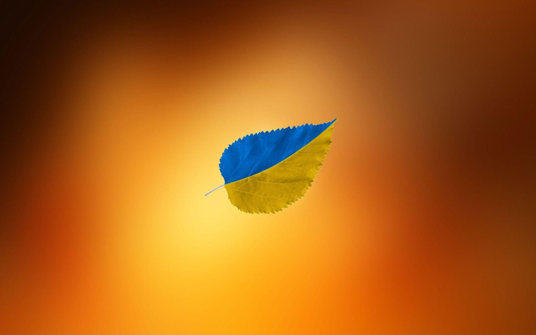 A piece of wood with the colors of the Ukrainian flag Android