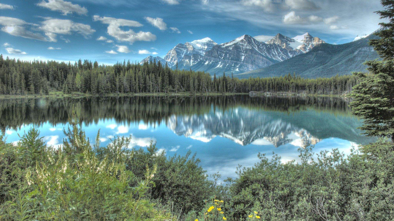 1080p Canada Wallpapers The Home Of The Grizzly Bear