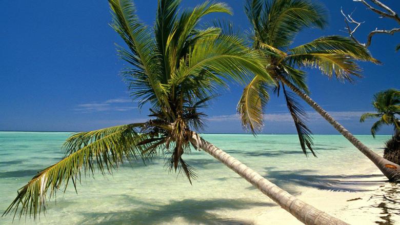 Dominican Republic 578121