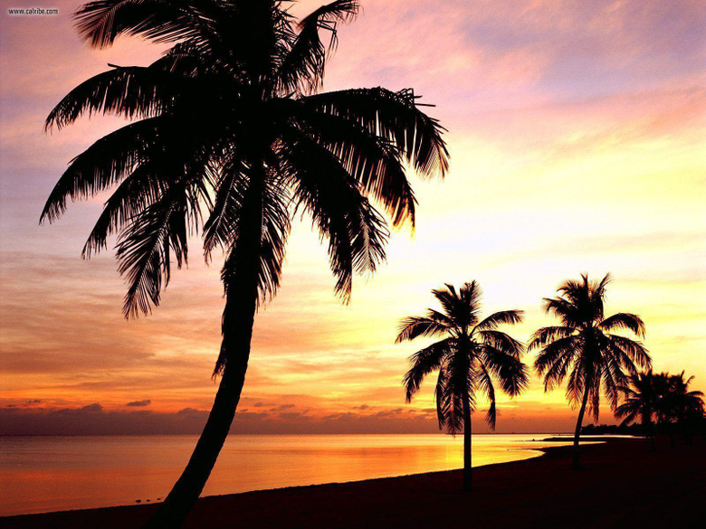 Key West Florida Computer Wallpapers