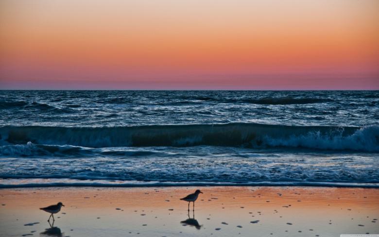 Sunset In Naples Florida HD desktop wallpapers Widescreen High