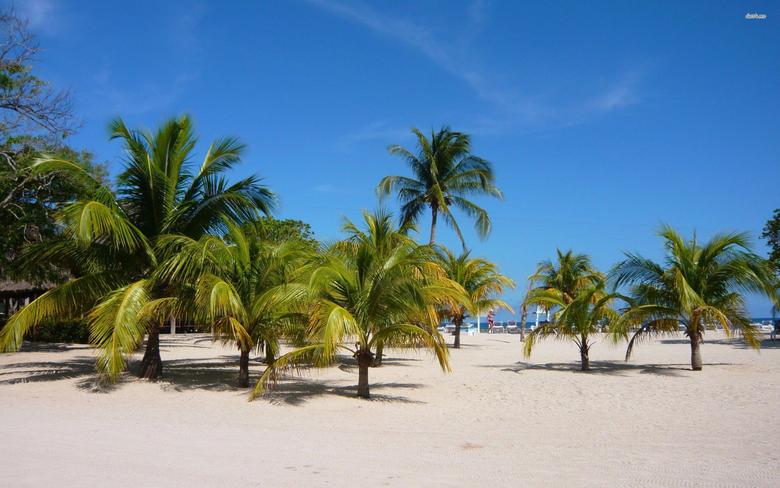 Haiti Backgrounds