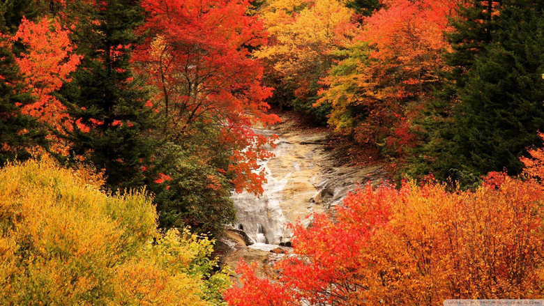 Blue Ridge Parkway North Carolina Autumn HD desktop wallpapers