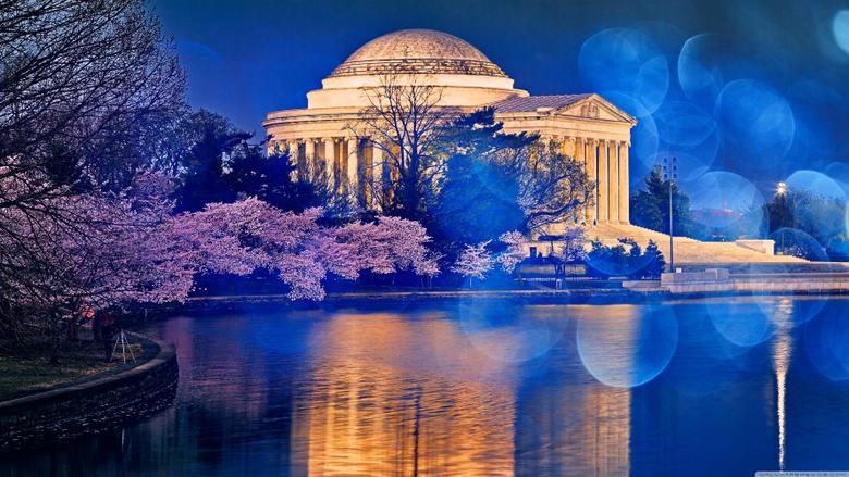 Thomas Jefferson Memorial Cherry Blossom 4K HD Desktop Wallpapers