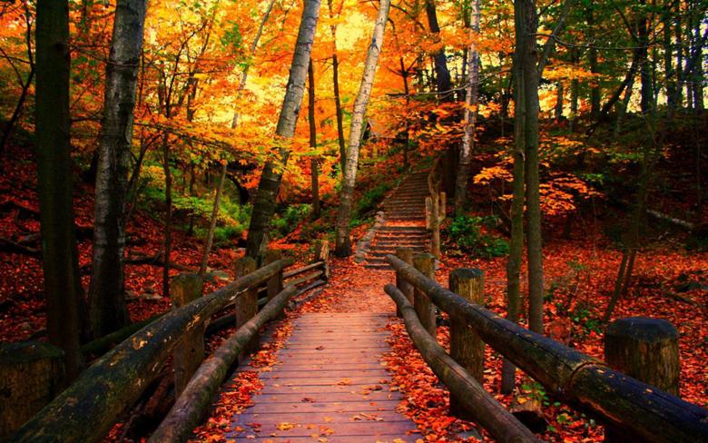 Wisconsin Autumn Wallpapers