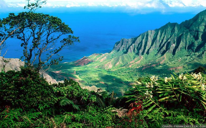 Hawaii Image 1920x1200 by Corben Hawaii Wallpapers