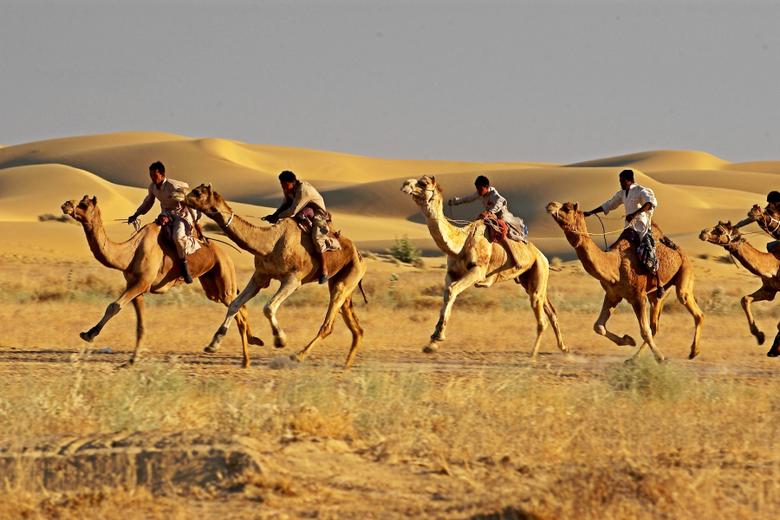 Golden Triangle Tour with Desert Festival Jaisalmer Indian Golden