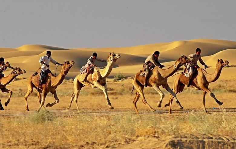 Jaisalmer Desert Festival 2019