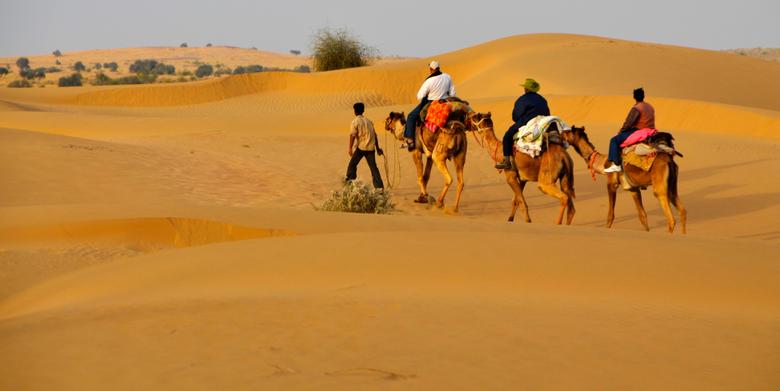 Suvidha Tourism Jaisalmer