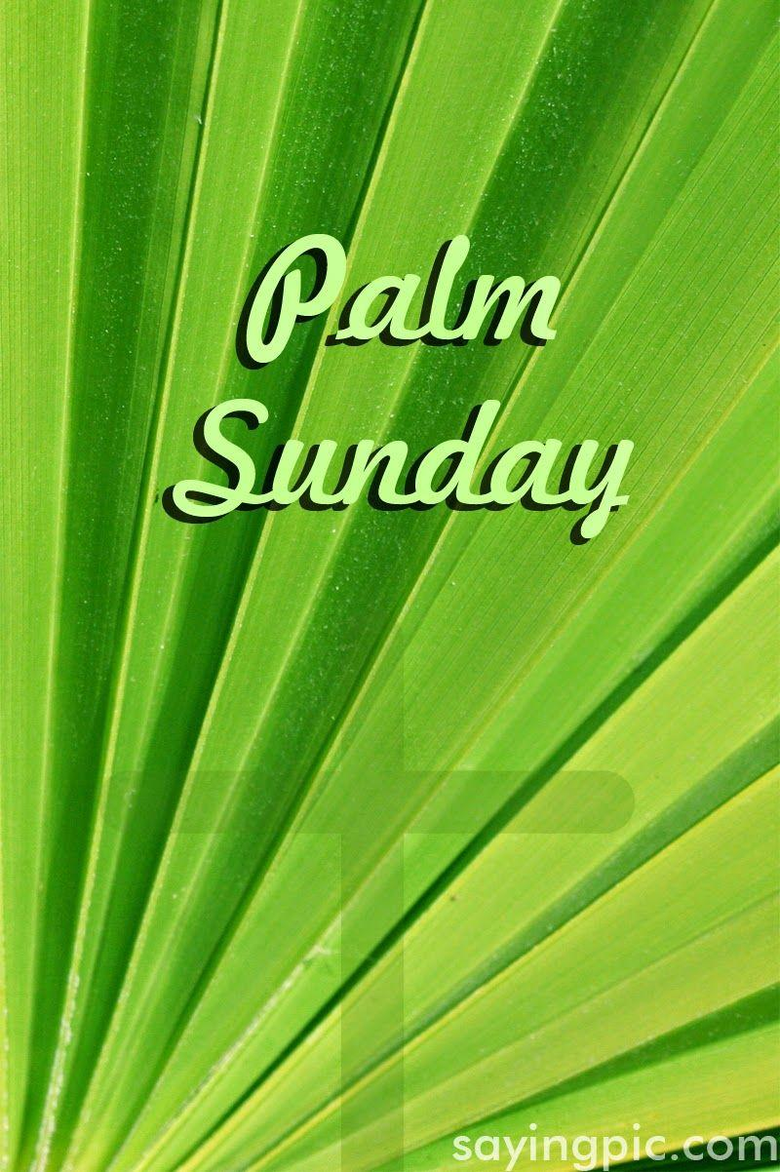 Palm Sunday Quotes image and wallpapers for Celebration of Palm