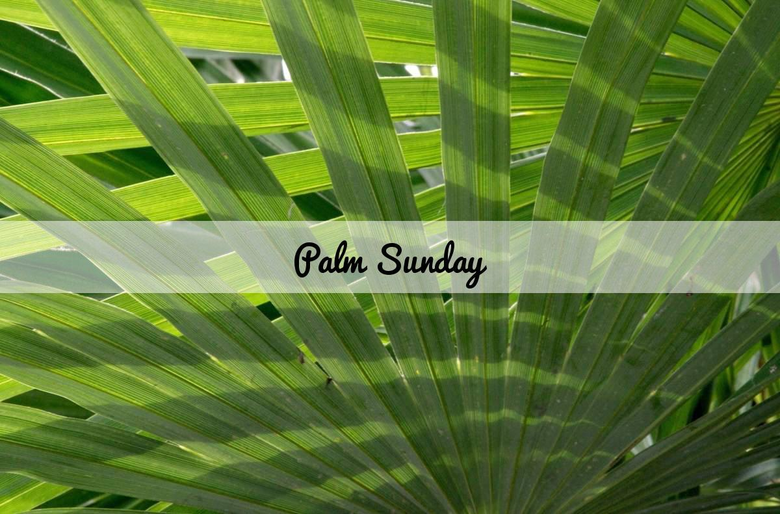 Palm Sunday HD Wallpapers and Image