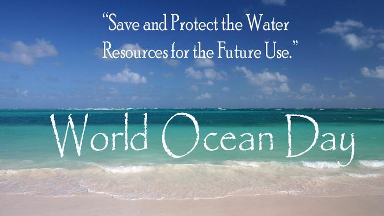 Happy World Ocean Day Penguin Swim Ocean Hd Wallpapers