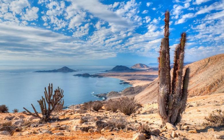nature Landscape Beach Cactus Sea Hill Clouds Atacama Desert