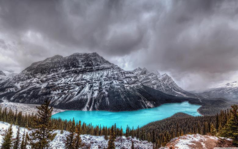 Peyto Lake Canadian Rockies Banff National Park 4K HD Desktop