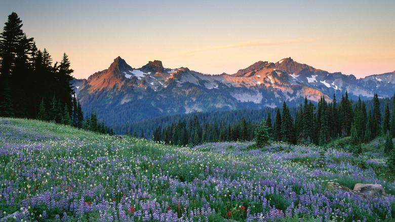 Tatoosh Range Washington