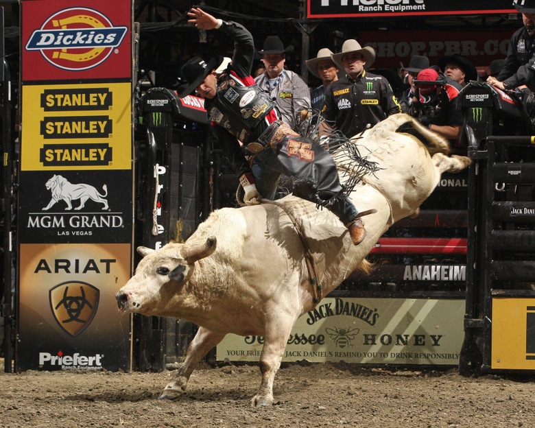 Bull riding bullrider rodeo western cowboy extreme cow