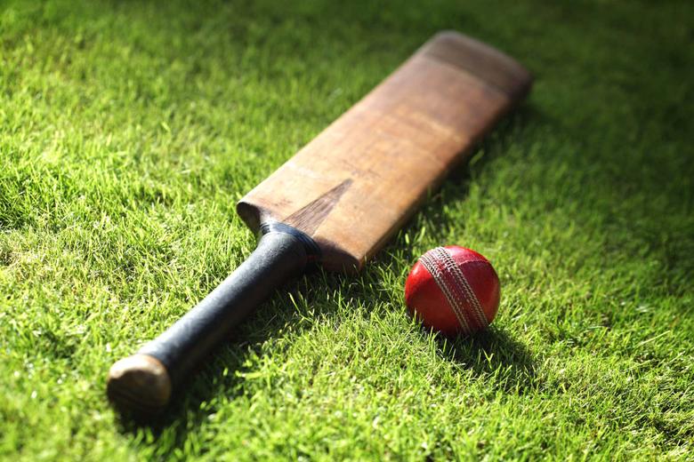 Fine HDQ Cricket Image