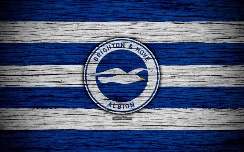 wallpapers Brighton and Hove Albion 4k Premier League