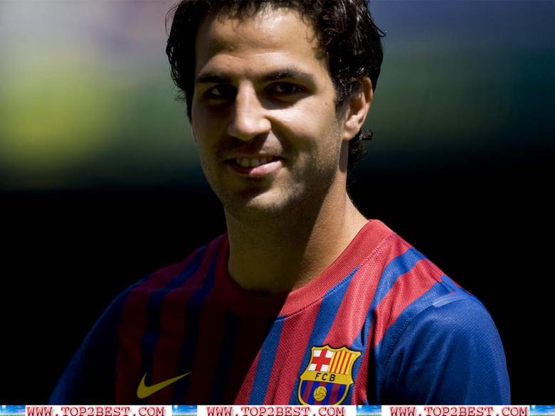 Cesc Fabregas Wallpapers Barcelona Player Profile Cesc Fabregas