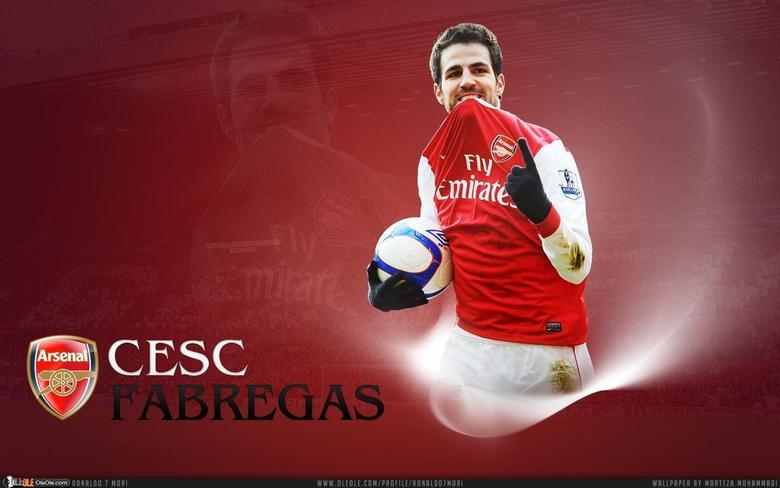 Cesc Fabregas Spanish Top Class Footballer Backgrounds