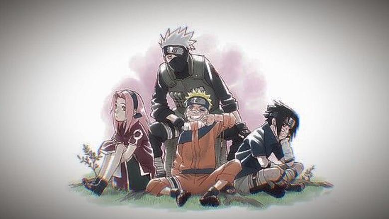 Team 7 3