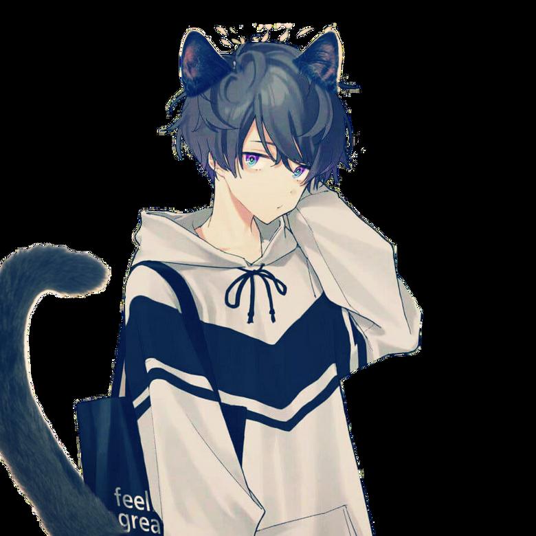Materi Pelajaran 10 Anime Neko Boy