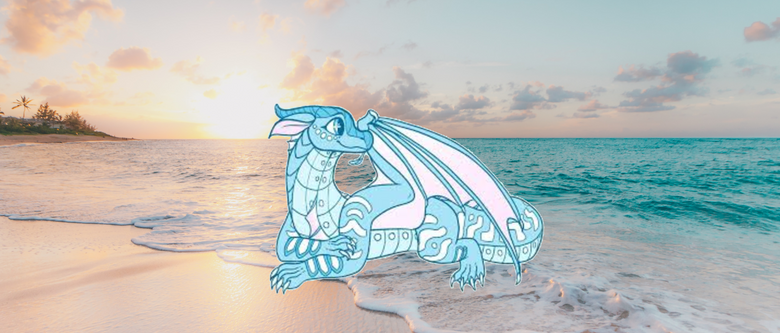 Wings of Fire Anemone at the Beach anemone drawing by jadegrove