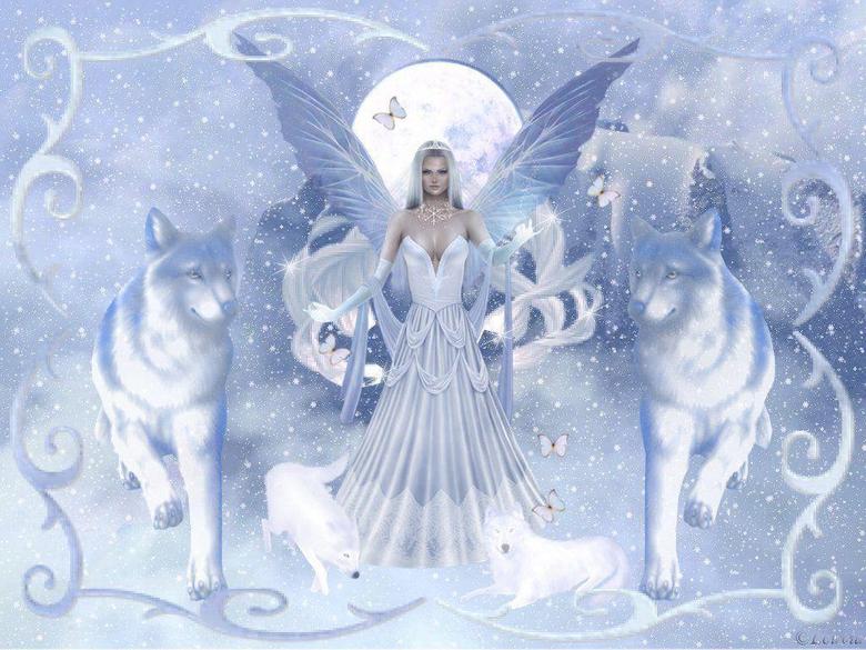 Beautiful Angel Wallpapers Image HD Wallpapers