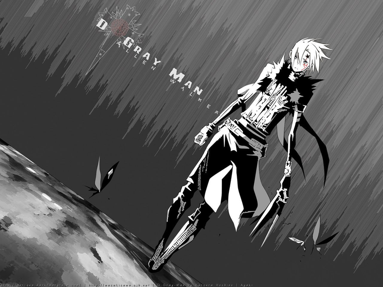 Best 45 Funny D Gray Man Wallpapers on HipWallpapers