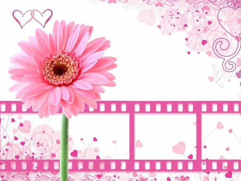 Gva Pink Wallpapers
