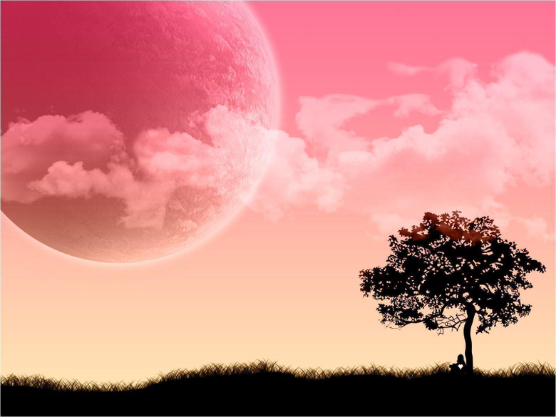 Lovely Pink Desktop Wallpapers