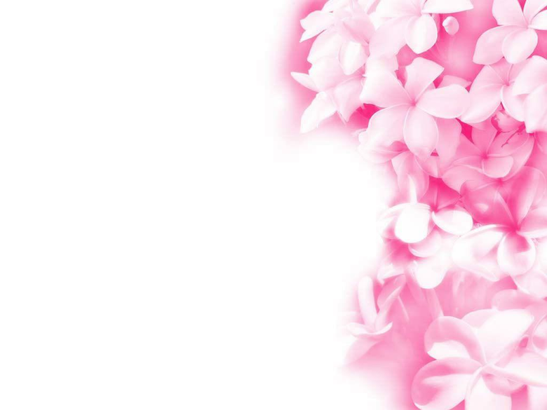 Pink Wallpaper wallpaper Pink Wallpapers hd wallpaper backgrounds