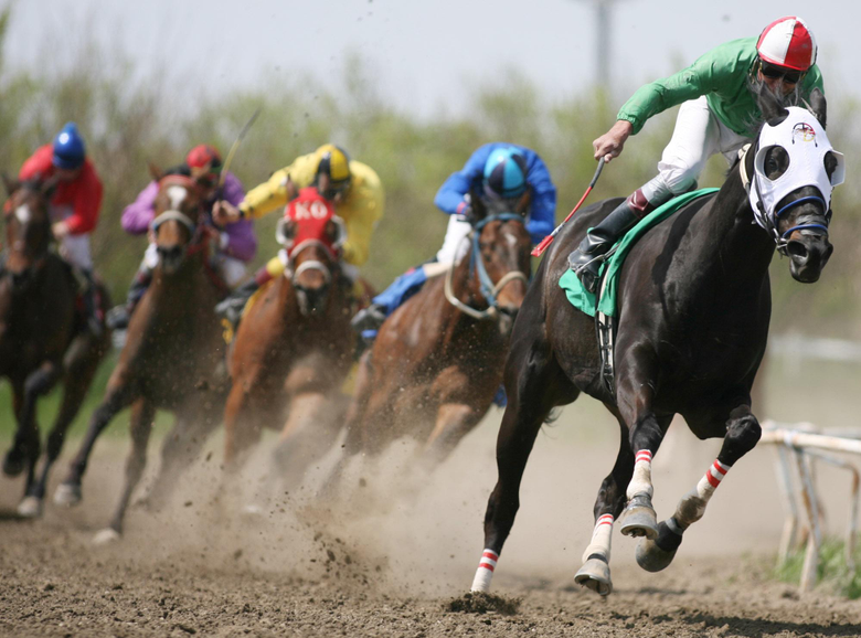 Race Horse Wallpapers