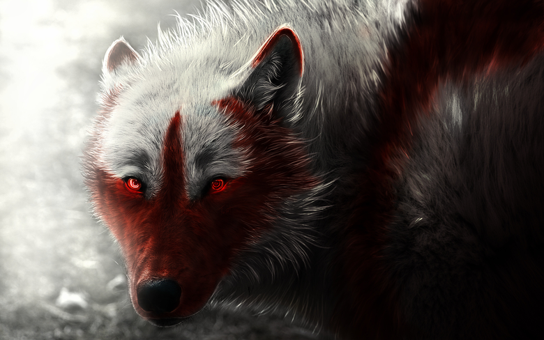 Furry Wolf Wallpapers