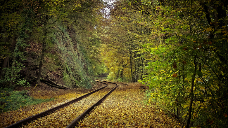 Forest Train Track Wallpapers