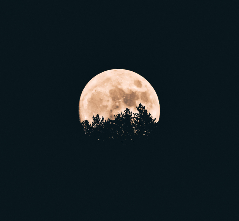 Moon Image HD Pictures Photos on Unsplash